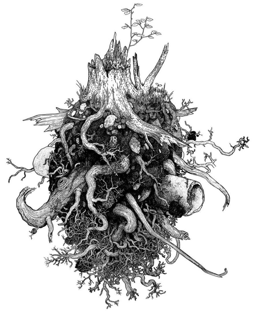 Rootball: Last Remnant After the End of the World, 2012